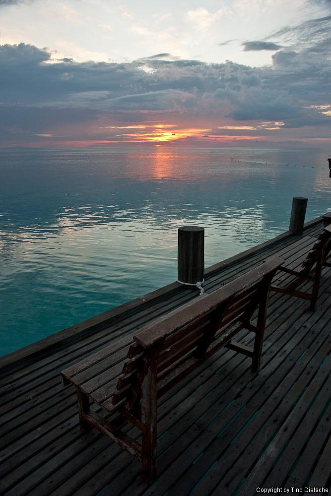 -112_Borneo.jpg