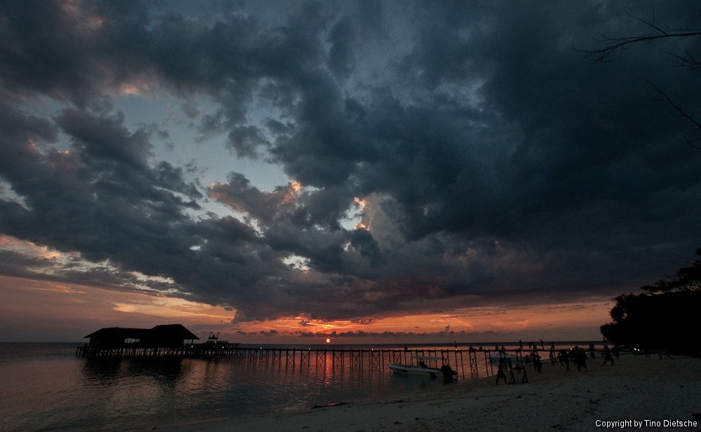 -117_Borneo.jpg