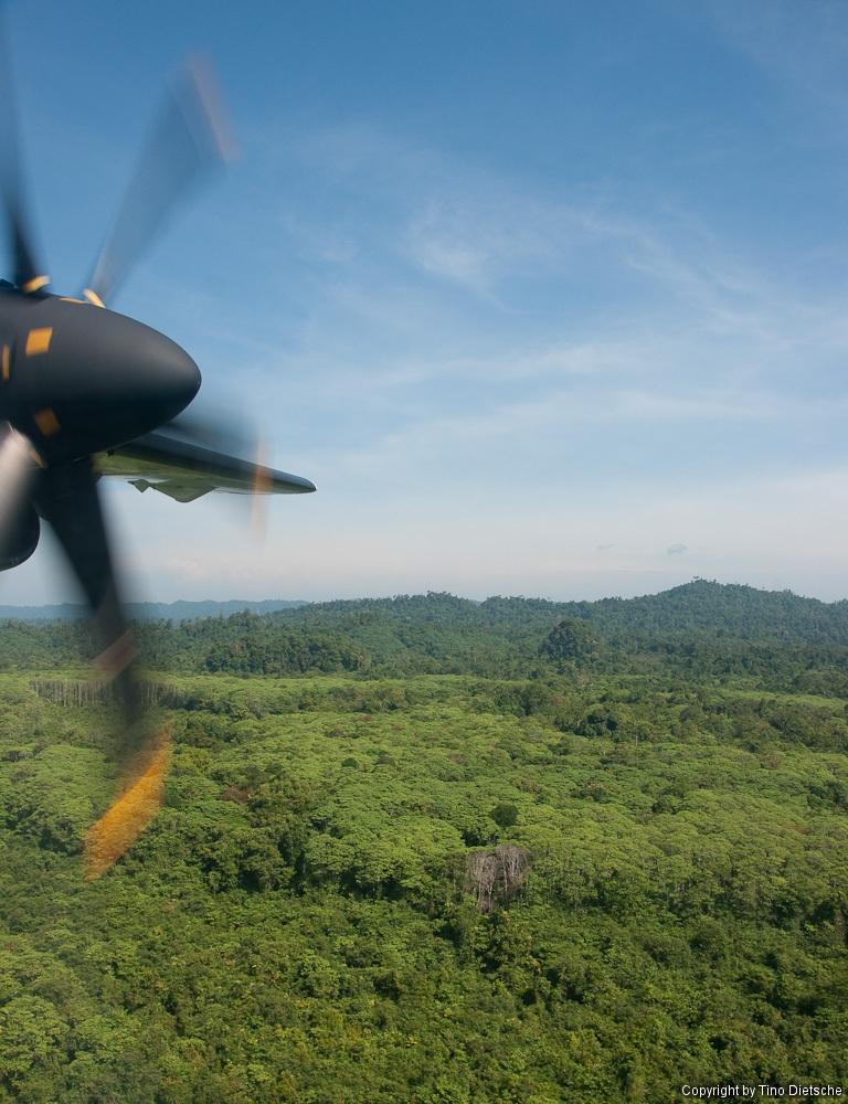 -33_Borneo.jpg