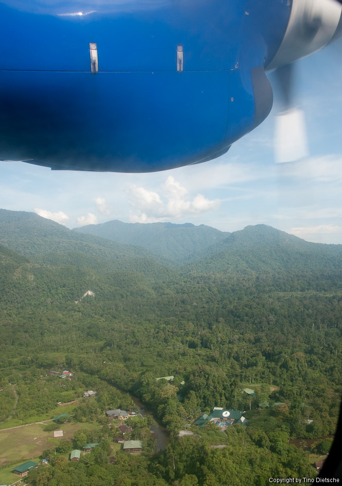 -79_Borneo.jpg